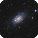 NGC 2403 - Spiral Galaxy in Camelopardalis,                                Victor Van Puyenbroeck