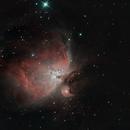 Great Orion Nebula - M42,                                Didier Walliang