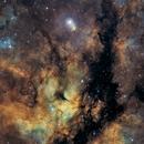 Gamma Cygni Nebula - SHO,                                Thomas Richter