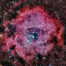 NGC 2244 - Rosette Nebula,                                TimotheusIan