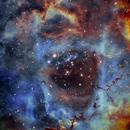 NGC2244 - Nebulosa Rosetta - Ha-S2HaO3,                                Francesco Di Cencio