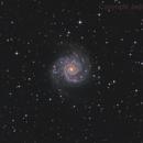 M74 LRGB,                                Jens Zippel