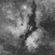 IC 1318 (Butterfly Nebula),                                Rodrigo
