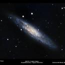 NGC 253 - Sculptor Galaxy,                                Fernando Roquel Torres