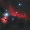 Horse head nebula,                                Mark