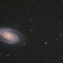 Bode's Nebula(M81 and M82),                                Trevor Nicholls