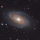 M81 Bodes Galaxy,                                Joe Alexander