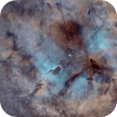 IC 1396 Elephant Trunk Bi Color,                                Michael Wolter