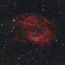 Lower's Nebula (Sh2-261) in Ha + RGB (Version 2),                                Scott Davis
