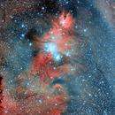 NGC 2264 Christmas Tree Nebula,                                Jason Providakes