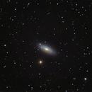 NGC 2841 - Tiger s eye galaxy,                                Marko Emeršič