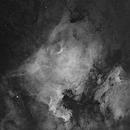 NGC7000 & IC5070 in mono - 4 pane mosaic,                                Sara Wager