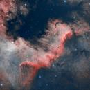 NGC 7000 - Cygnus Wall HOO,                                FedericoDS