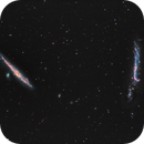 The Whale (NGC 4631) and the Hockey Stick (NGC 4656) - A second attempt this time in LRGB-Ha…,                                Patrick Cosgrove