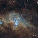 The Statue of Liberty Nebula,                                Fernando Oliveira de Menezes