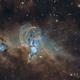 The Statue of Liberty Nebula,                                Fernando Oliveira...