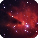NGC2264 - Cold [HSO],                                Rich Sky