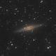 NGC 891,                                Máximo Bustamante