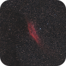 NGC1499,                                Armel FAUVEAU