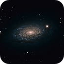 M63 Sunflower Galaxy, a L-RGB from RAW Images from the Misti Mountain Observatory,                                Bernd Neumann