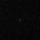 NGC 7331 Widefield,                                petercubic