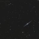 NGC4565,                                Luc Aubut