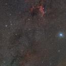 Canis Major,                                Alricha