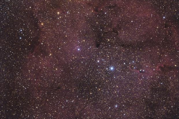 [Neb] IC1396 (Nébuleuse de la Trompe d'éléphant) @Popol,                                Raypulsif