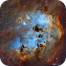 IC 410 - The Tadpoles Nebula Close Up,                                Alan Pham