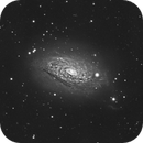"""""""It starting to bloom - Messier 63"""",                                carl0s"""