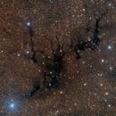 Sandqvist 169, Circinus W, dark nebulae in Circinus,                                José Joaquín Pérez