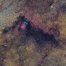 Wide field in IC1284,                                Michele Campini