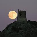 Moonrise,                                Sebastian Voltmer