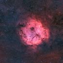 IC 1396 in SH2-131 in BiColor,                                Jonas Illner