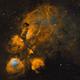 Cat's Paw Nebula,                                Uri Abraham