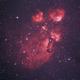 Cat's Paw Nebula (NGC 6334),                                Hon Yi