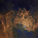 Flaming Star Nebula,                                Frank Turina