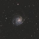 M101 LRGB Ha,                                Matthieu BUI