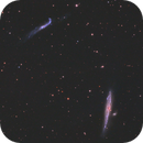 Whale Galaxy Widefield,                                pmneo