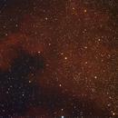 NGC7000,                                Michael Halliday