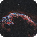 NGC6992 Bicolor,                                Michael