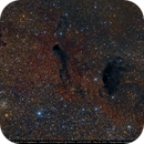 M24 The Sagittarius Star Cloud - B92 & B93 and More Stuff,                                Michael Feigenbaum