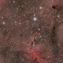 IC1396 and the elephant trunk nebula,                                Jan Schubert