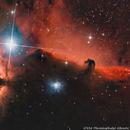 The Horsehead Nebula,                                Kai Albrecht