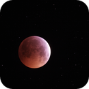 Blood Moon - Before Eclipse - 21st January 2019,                                AstroNico