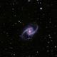 NGC 1365,                                Steffen Boelaars