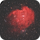 NGC 2174,                                Alessandro Curci