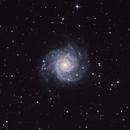 M74, The Phantom Galaxy,                                Sergey Trudolyubov