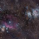Gran Campo de nebulosa de Orión y Cabeza de Caballo,                                Xema García