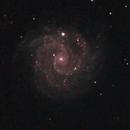 NGC 3184 - The Little Pinwheel - LRGB,                                Ron